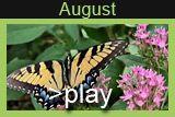 August in Clark Gardens