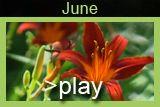 June in Clark Gardens