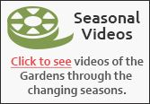 Videos of the Seasons