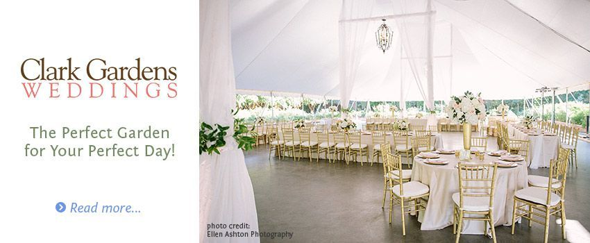 Elegant Tent Wedding Reception