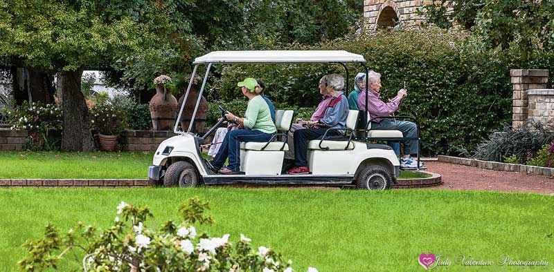 Guided Cart Tour of Clark Gardens